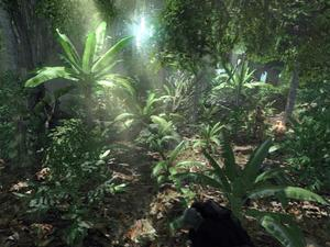 Cryengine Jungle