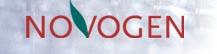 Novogen Limited
