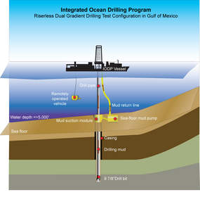 case application deepwater in deep trouble 664665365 uploaded by anikatabassum related interests entrepreneurship strategic management diversity (business) self-improvement motivation rating and stats 00 (0) document actions download  my career 5 3 6 case application 1: deepwater in deep trouble 5 3 8 case application 2: baggage blunders 539 chapter 19 operations.