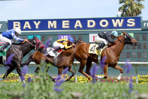 The assets of Bay Meadows Race Course will be on auction from August 23-25. Live bidding and more information are available at www.greatamerican.com