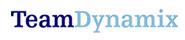 TeamDynamix