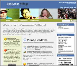 The Consumer Village home page hosts new research activities, as well as community updates, monthly flash poll results and charitable contributions.