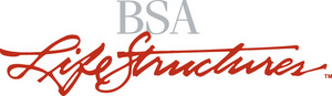 BSA LifeStructures