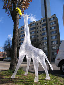Noted artist and Scotch Off The Roll Tape Sculpture Contest judge, Mark Jenkins, created a tape sculpture of a life-sized giraffe.