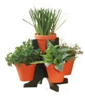 Buzzy Herb Stand
