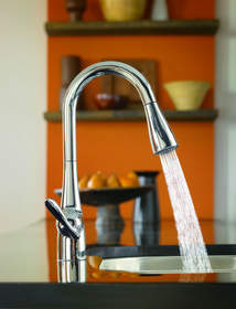 NEW ARBOR(TM) PULLDOWN KITCHEN FAUCET FROM MOEN 