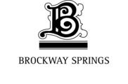 Brockway Springs Lakefront Condominiums