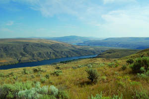 Hunt Ranch, a 15,548-acre ranch in Washington, will sell at real estate auction in 31 tracts on September 28