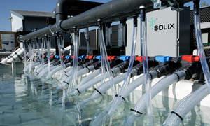 Solix Biofuels