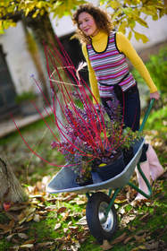 Identify problem areas in need of treatment. Well-timed pruning improves your landscape.