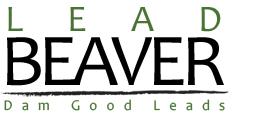 Lead Beaver, insurance, leads, internet leads, lead companies, online marketing, affiliate marketing