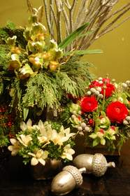 Holiday arrangements from New Leaf flores