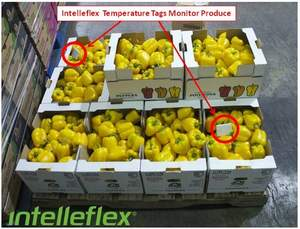 cold chain, perishables, pharmaceuticals, RFID, supply chain, asset management