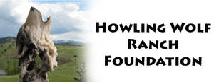 Sacrifices of wounded warriors honored at Howling Wolf Ranch