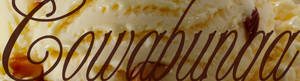 Cowabunga Super Premium Designer Ice Cream www.CowabungaIceCream.com