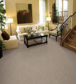 Bliss HealthyTouch carpet is loaded with features.