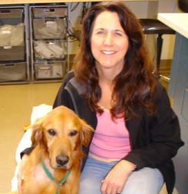 successful bone marrow transplant in dog with lymphoma