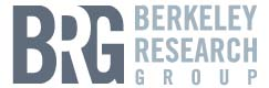 Berkeley Research Group, LLC