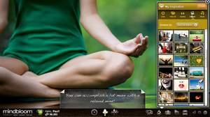 Mindbloom, life game, interactive health, gamification, alternative health
