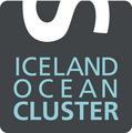 Iceland Ocean Cluster