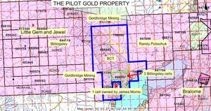 The Pilot Gold Property map image