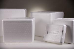 ACH Foam Technologies EPS Packaging