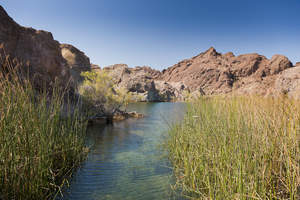 Lake Havasu's Quiet Side GoLakeHavasu.com Adds Guide to Best Arizona Hiking