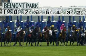 belmont park horseracing, things to do on long island