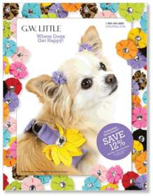 G.W. Little summer pet catalog cover