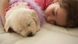 Six Sleeping Tips for Kids