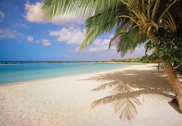 Isla Privada en Aruba
