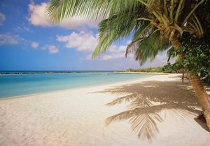 Aruba vacation deals