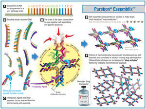 Key steps in the Parabon Essemblix process