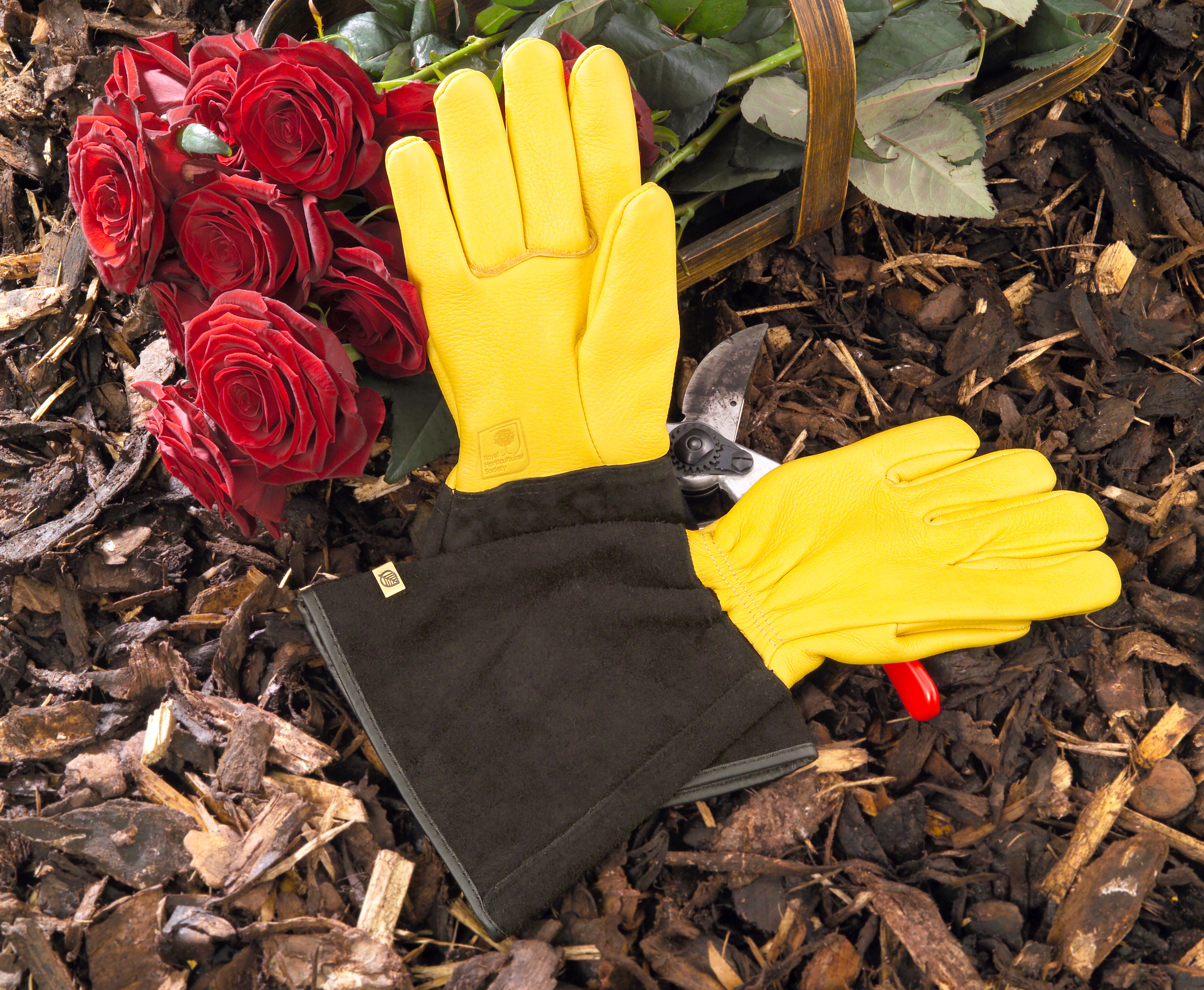 garden gloves, new garden gloves, best English gardening gear