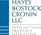 Hayes Bostock & Cronin LLC