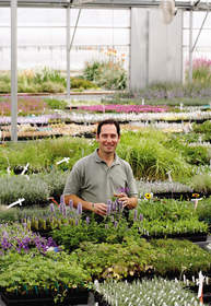 New plants for 2013, plant finder, high country gardens