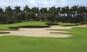 Naples Golf Resorts.