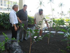 HawaiiBigIslandhotel