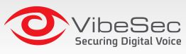 VibeSec