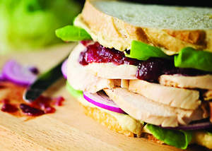 Holiday Turkey Sandwich with Hummus and Cranberry