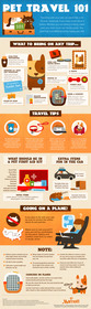 Pet Travel Tips 101