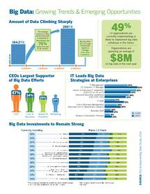 Big Data, Data Visualization, Analytics, IT, Tech, Metrics, Data, Data Mining, Infographic, Research