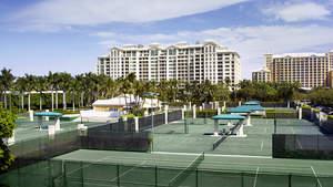 Miami Resort