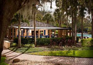 Orlando hotel pool
