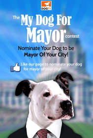 Bark the Vote: Nominate Your Dog for Mayor