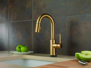 Photo Courtesy of Delta Faucet Company