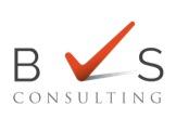 BVS Consulting