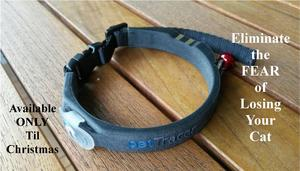 gps cat collar, ultra-light gps cat collar, petTracer, missing cat, lost cat