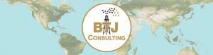 BTJ Consulting