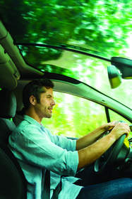 Is Your Car Environmentally Friendly?